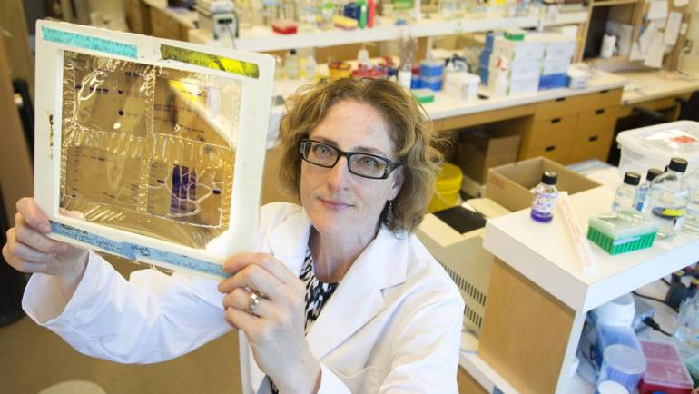 CBC Listen: Dr. Caroline Cameron discusses serology-based testing and how it could potentially help with the COVID-19 pandemic